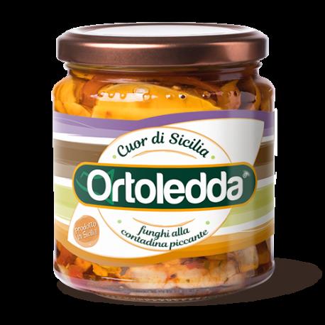 funghi_contadina_piccante_ortoledda